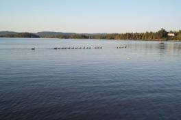 Saguenay-Lac-St-Jean-Bicycle-Tour-2014-ACC-0056
