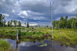 Saguenay-Lac-St-Jean-Bicycle-Tour-2016-Jeff-Young-0029