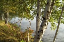 Saint-John-River-Tour-2012-ACC-0020